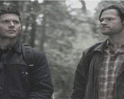 La historia de los Winchester continua